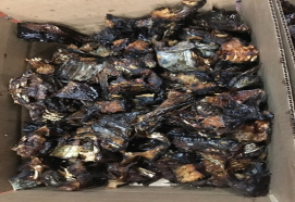 roastedFish